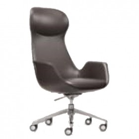 Adolph class chair I