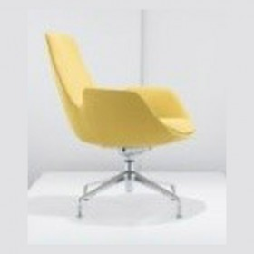 Adolph class chair III